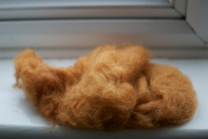 Almost dry orange wool on windowsill