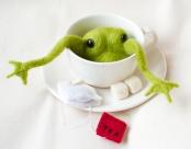 Unfinished frog