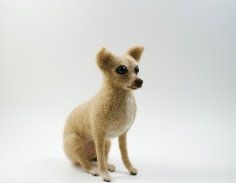 needle felted Chihuahua staring right